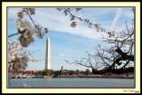 Washington Monument 26