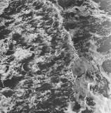 Wave #3, Sandbridge, Virginia, 2010.jpg