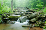 shenandoah_national_park