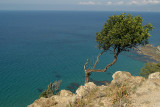 Akamas Peninsula Coastline 11