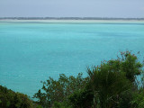 Blue Sea and Green Vegetation Middle Caicos.jpg