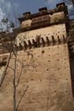 Looking up at Raj Mahal