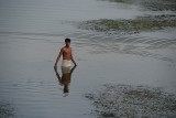 Man Stands in Water