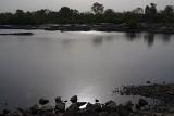 The Betwa River Orchha 02