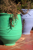 Green and Blue Pots