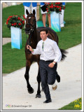 Olympic Trot-up 2008