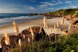 praia galheta florianopolis
