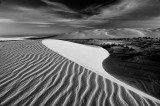 dunes2bw.jpg