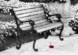 georgiene_bench