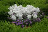 Potted Plant Arrangement - Lily Pond Area