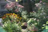 Garden Plot through a Chain Link Fence