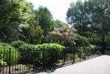 Walkway & Landscape