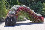 Children's Adventure Garden