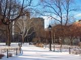 January 24-25, 2009 Photo Shoot