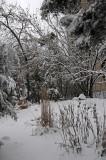 Winter Snow - LaGuardia Place Time Landscape Garden