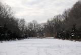 Winter - Brooklyn Botanic Gardens