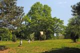 Fort Greene Park Brooklyn
