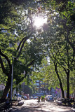 Rising Sun at Washington Place East