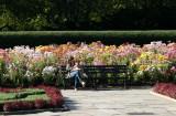 Conservatory Flower Garden