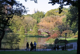 The Duck Pond at Central Park South