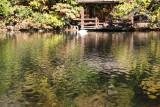 Ramble Lakeshore Bird Feeding Station