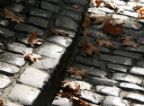 Dew Covered Cobblestone Road to the Cloister with Foliage
