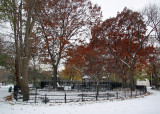 Fall Foliage, Children's Playground & Snow