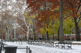 Southwest View - Fall Foliage & Snow