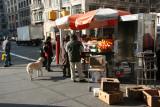 Fruit Stand Corner