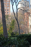 Eastside of Gramercy Park - Northwest View