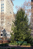 Christmas Tree - Southside of Gramercy Park
