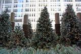 Holiday Trees at 44th Street
