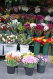 Street Florist Spring Flower Display