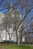 Beresford Apartment House from Hayden Planetarium Garden