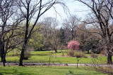 Spring View of the Grounds