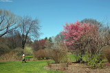Grounds - Spring View