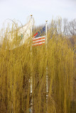 Flags at the Lasker Pool & Rink - Harlem Meer