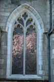 Grace Church Garden - Magnolia Blossoms Reflected
