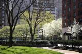 Rector Place Garden