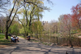 North Pool Area - Central Park