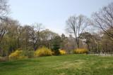 North Meadow Area