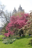 Central Park West near West 96th Street