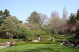 Scent Garden - Brooklyn Botanic Gardens