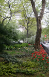 Arch & WSN Garden View