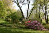 Native Plant Garden - Brooklyn Botanic Gardens