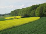 Heitersberg 2.jpg