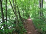 Reuss Trail 2.jpg