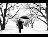 WinterRoadComposite.jpg