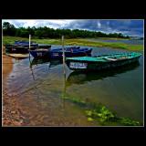 Obidos lagoon moments...
