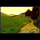 Walking down the hills...